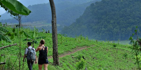 Hiking and trekking tours in the Mae Taeng and Chiang Dao hills, a short distance from Le Cocotier Resort.