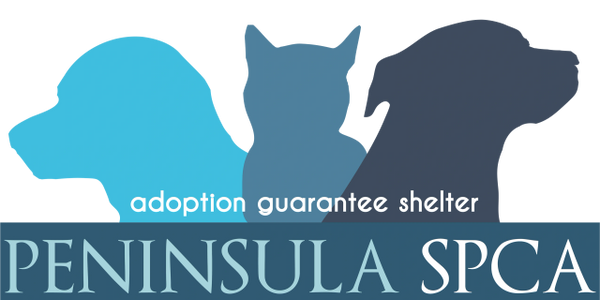 Loveyoulove fundraiser for Peninsula SPCA holiday wishlist