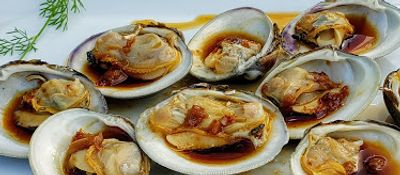 Steamed Little Neck baby clams with oriental ginger/garlic dressing (all organic ingredients).