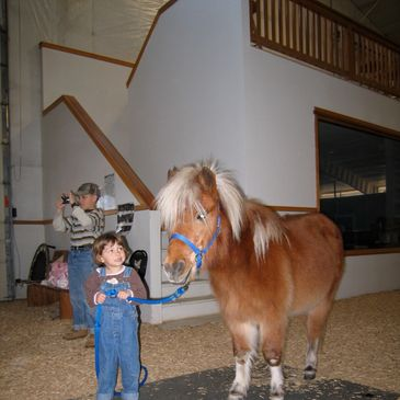 Small pony with a smaller child! EquesTraining lessons are for tots to teens to adults.