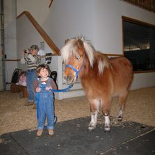Small pony with a smaller child!