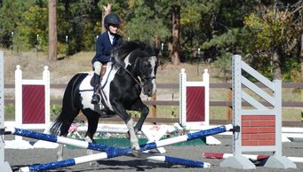 EquesTraining student practices her jumping form over a fence with Joker's Wild.