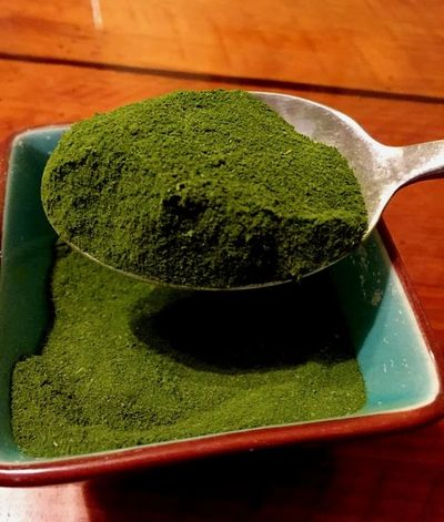 chaya leaf powder the best highest quality green superfood pure-life.com grown in the usa medicinal