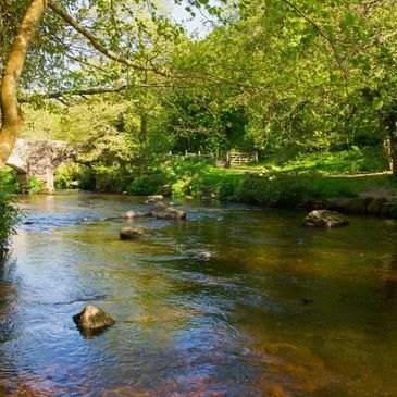 Fly Fishing Coaching Guiding Devon Dartmoor, Exmoor River Brown Trout, Rivers, Stream, Grayling