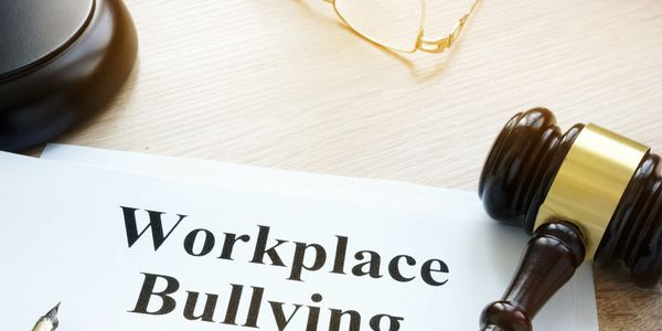hazing, workplace bullying and harassment, expert witness and litigation consulting, nonprofits,