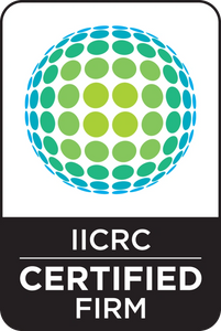 iicrc professional carpet cleaning Edmonton