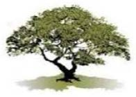 Oakdale Communities