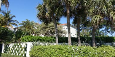 Search all Palm Beach MLS listings In Town, properties for sale, homes, condos for sale