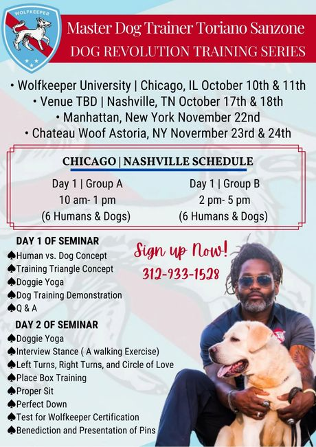 Chicago Dg Trainer you can trust, Best Dog Trainer, Dog Training, Dog Bootcamp, Dog Private Training