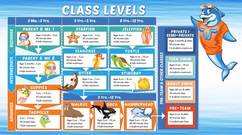 Swimming lesson class levels