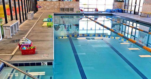 Locations Login Water Wings Swim School