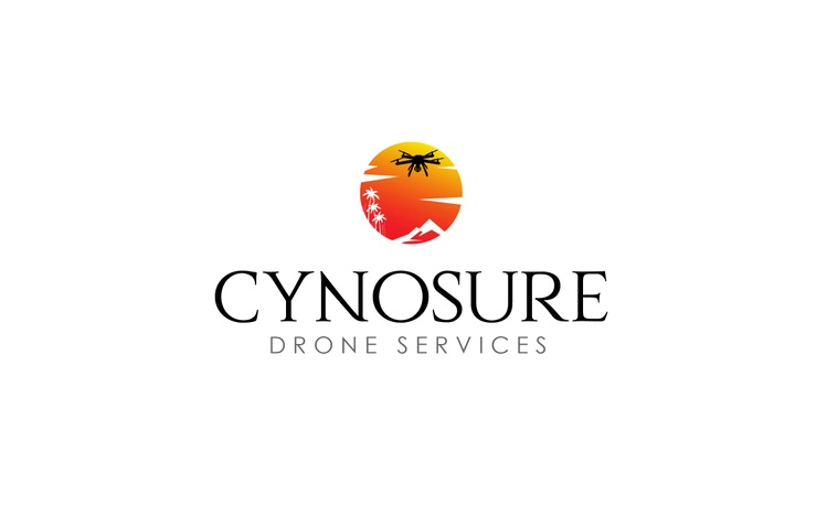 Cynosure Drone Services, Inc.