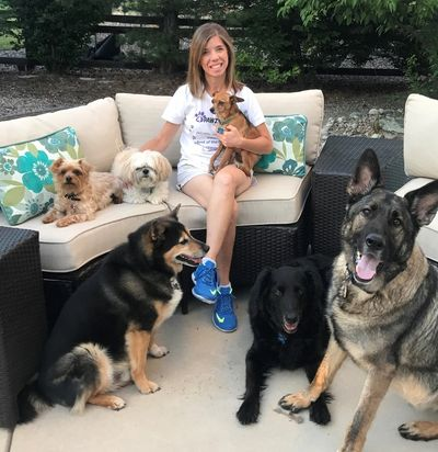 Tammy and a group of dogs having a fun day