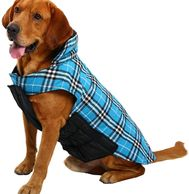 RUFFWEAR - Powder Hound Insulated, Water Resistant Cold Weather Jacket for Dogs