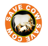 SaveCow.in is movement for save cow in India