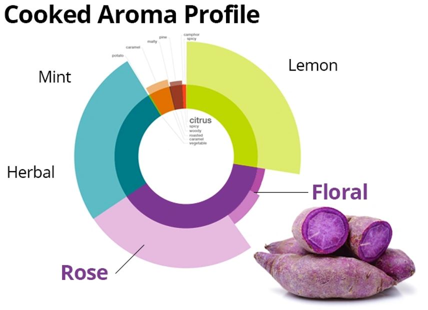 Blue Sky Farms of Florida Purple Sweet Potato Cooked Aroma Info-Graphic