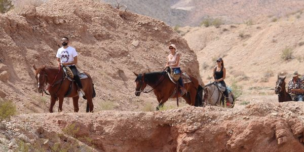 Trail ride in Las Vegas Nevada with friends and family. horseback riding