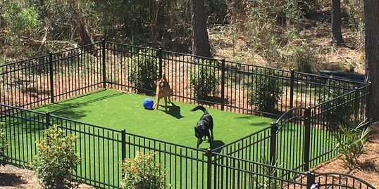 Hollywood, SC pool turf. Artificial turf. Artificial lawn. Pet grass.