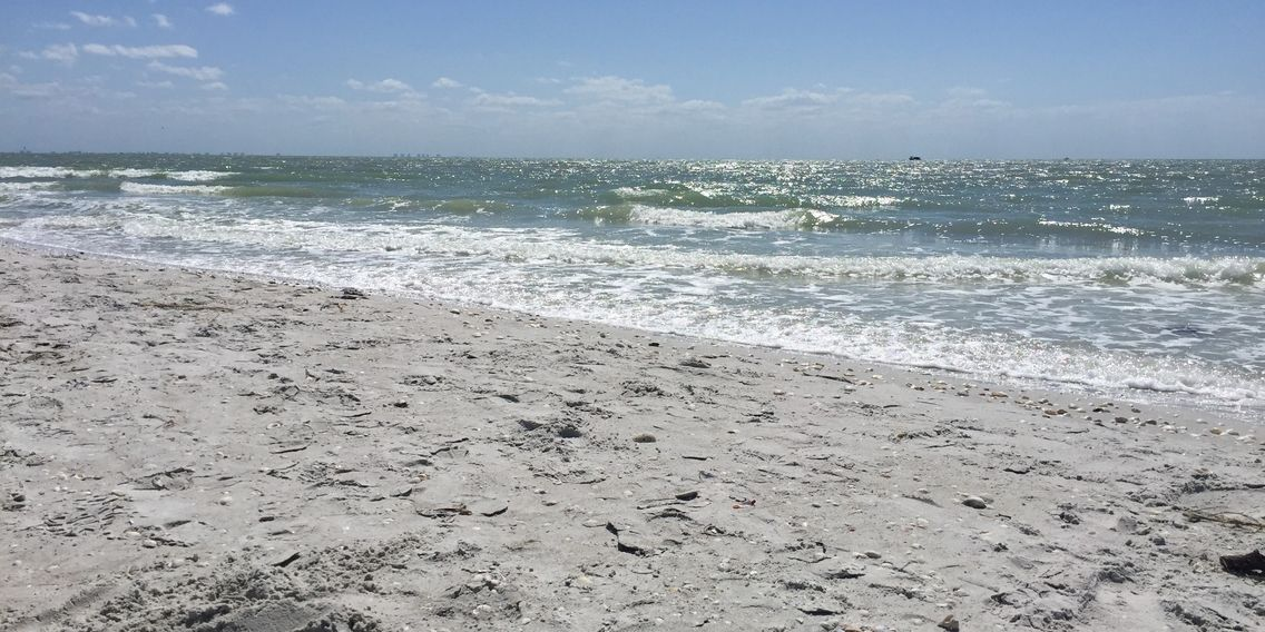 gulf front condo with beautiful shelling beach