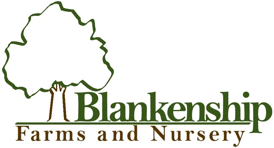 Blankenship Farms and Nursery