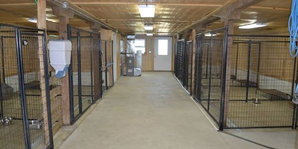 Aberdeen South Dakota Dog Boarding Facility