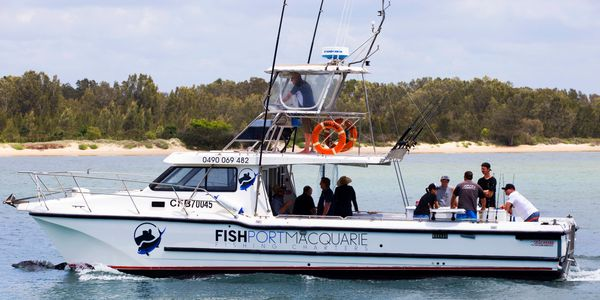 Fishing Charter Port Macquarie Fish Port Macquarie Whale Watching