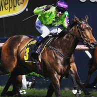 One for the Girls as Global Glamour steals the show down under (RacingPost.com)