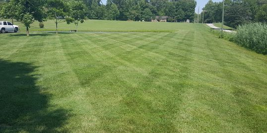 Lawn Care Marion Illinois