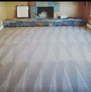 Walker's Steam Carpet Cleaning Detroit MI