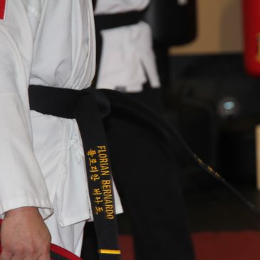 Traditional Martial Arts