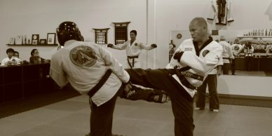 Sparring for martial arts