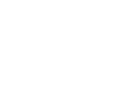 Dolphin Striker