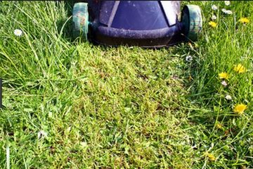 a great article on how to tell if it's time to get your mower sharpened.
