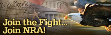 Words Join the Fight, Join NRA over the constitution, Bald Eagle soaring