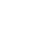 Artcityclaws Maine Coon Cattery