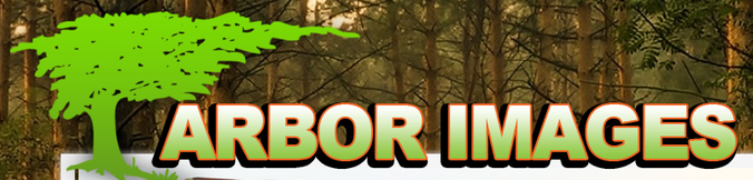 Arbor Images, INC.  &  Arbor Forest Products