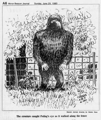 The creature as viewed by multiple witnesses in Union and Logan counties in June, 1980.
