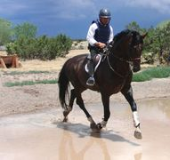 Eventing in New Mexico
