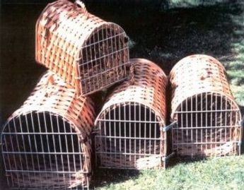 D-Shaped Kennel Carriers