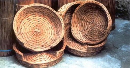 All Willow Round Dog Beds