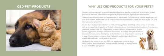CBD oil had been found to help with SO many issues from health to behavior!