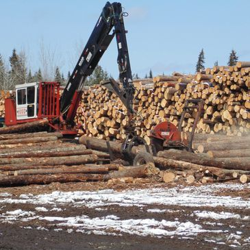 Sawmill or Log Buyer