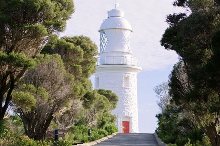 Cape Naturaliste Lighthouse, road leading to lighthouse in Margaret River with trees on either side
