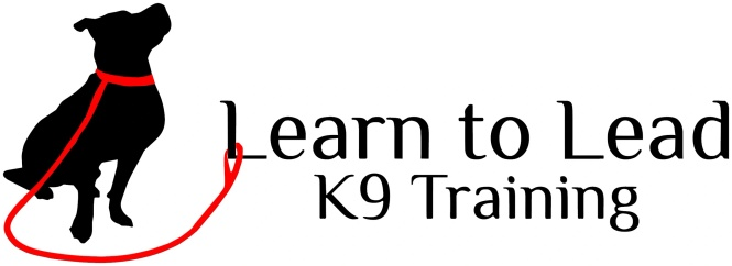 Learn to Lead K9 Training