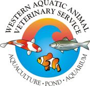 Western Aquatic Animal Veterinary Service