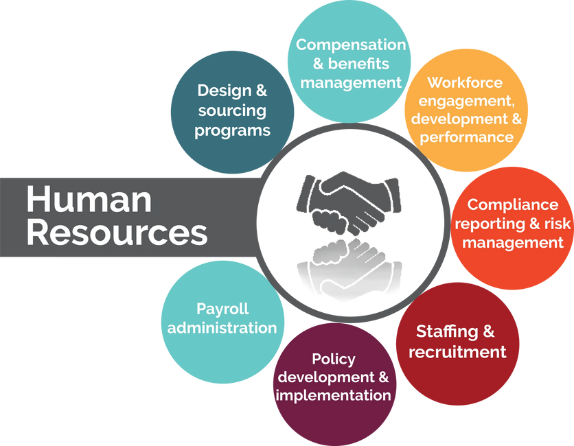 Hr Outsourcing Findright Corporate Solutions