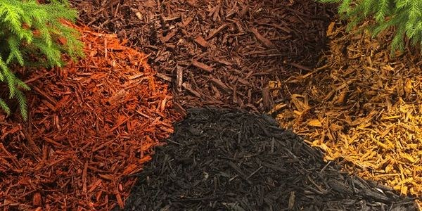 Large Variety of Mulch