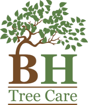 BH Tree Care