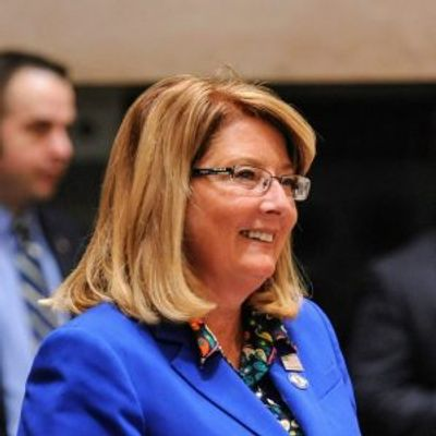 Pamela Helming - State Senator, 54th District