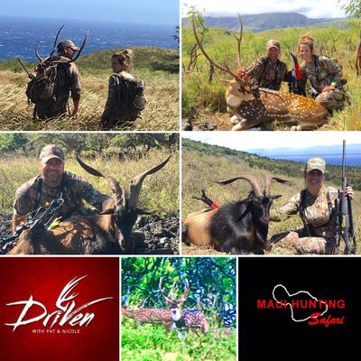 "Maui Hunting Safari on ""Driven with Pat & Nicole"", on The Outdoor Channel"